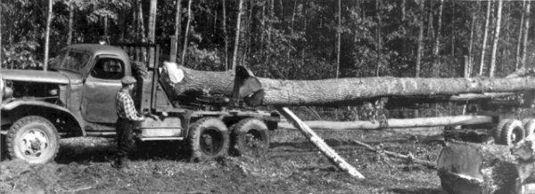 Лісовоз. Фото 1950-х років