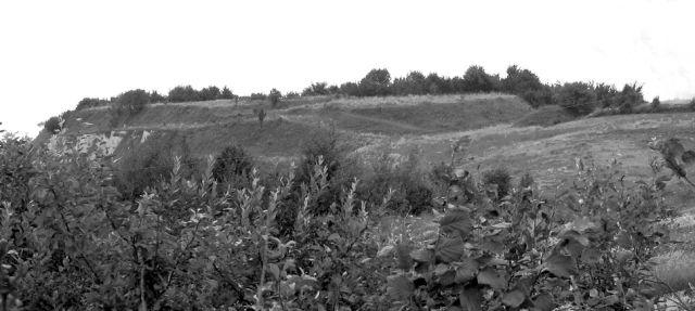 Сучасний вигляд північного городища (фото 2006 року)