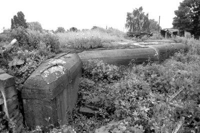 Залишки ДВТ на єврейському кладовищі. Фото 2009 року