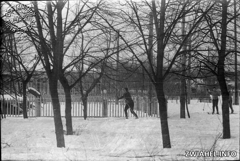 Лижні перегони у міському парку